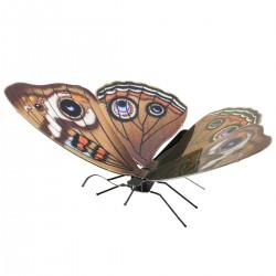 Maquette en métal - Papillon Ocellé